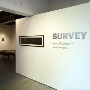 Survey installation shot